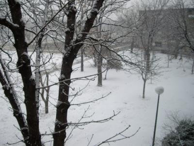 Nieve...
